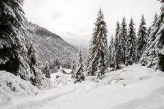 Paysage d'hiver en Val Canali Images libres de droits