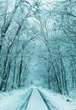 Paysage d'hiver, forêt neigeuse et route Photos libres de droits