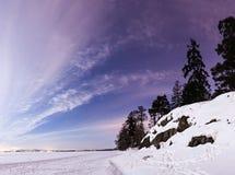 Paysage d'hiver la nuit Images libres de droits
