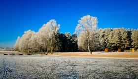 Paysage d'hiver le lac Images libres de droits