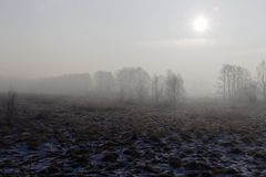 Paysage d'hiver, matin froid brumeux photographie stock