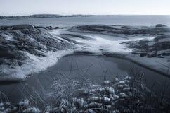 Paysage d'hiver par la mer Image stock