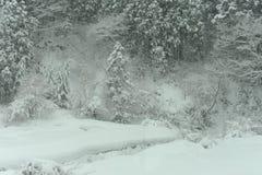 Paysage d'hiver pendant la tempête de neige de neige Photographie stock libre de droits