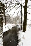 Paysage d'hiver, rivière dans la neige images libres de droits