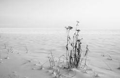 Paysage d'hiver sur le lac Ladoga image stock