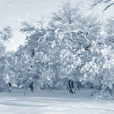 Paysage d'hiver, tempête de neige Images stock