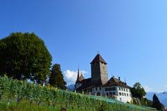 Paysage d'Interlaken photos libres de droits