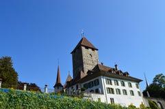 Paysage d'Interlaken Images libres de droits