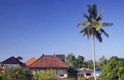 Paysage d'Ubud Palmier et maisons traditionnelles Photo libre de droits