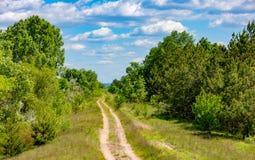 Paysage d'Ummer avec la route d'ornière dans la forêt Images stock