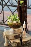 Paysage d'un arbre, herbe, bougies Photographie stock