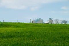 Paysage d'un champ vert avec le fond d'arbres photo libre de droits