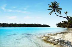 Paysage d'une île de pied dans le cuisinier Islands de lagune d'Aitutaki Photo libre de droits
