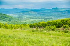 Paysage dans Carpathiens au printemps Photographie stock libre de droits