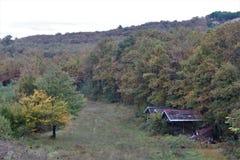 Paysage dans la couleur d'automne photos libres de droits