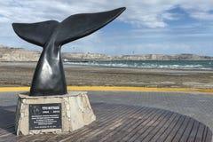 Paysage dans la péninsule de Valdes Photographie stock libre de droits