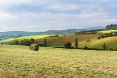 Paysage dans la région de chianti dans la province de Sienne tuscany l'Italie photo libre de droits
