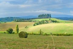 Paysage dans la région de chianti dans la province de Sienne tuscany l'Italie image libre de droits