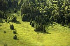 Paysage dans le canton d'Obwald switzerland Photos libres de droits