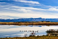Paysage dans le Patagonia, Argentine photographie stock