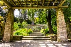 Paysage dans le San Francisco Botanical Garden image stock