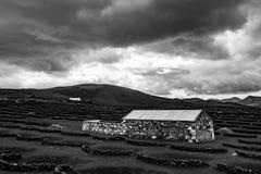 Paysage dans les vignes volcaniques noires de sol de Lanzarote image libre de droits