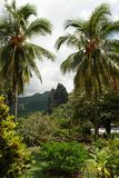 Paysage dans Nuku Hiva Photo stock