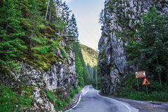 Paysage dans Romaniaa Photographie stock libre de droits