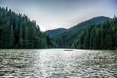 Paysage dans Romaniaa Photo stock
