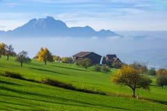 Paysage de bâti Pilatus et de luzerne de lac couverte de grenouille, Alpes, Suisse Image stock
