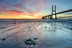 Paysage de beaux-arts à Lisbonne au lever de soleil Photos stock