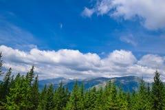 Paysage de belle vue des montagnes de Bucegi Photographie stock