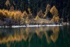 Paysage de Bipenggou Images stock