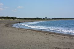 Paysage de bord de la mer d'été Image stock