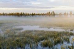 Paysage de brouillard au lever de soleil sur le marais en Sibérie Photos libres de droits