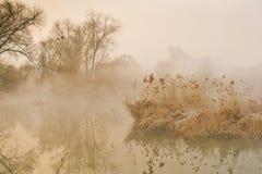 Paysage de brume Photographie stock