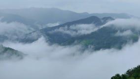 Paysage de brume de matin dans la saison des pluies banque de vidéos