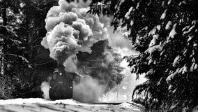 Paysage de Bucovina de Roumain avec le vieux train de vapeur dans l'horaire d'hiver photographie stock libre de droits