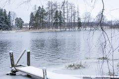 Paysage de calme d'hiver sur une rivière avec cygnes et pilier blancs La Finlande, rivière Kymijoki photo libre de droits
