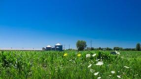 Paysage de campagne avec un beau ciel bleu images stock