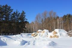 Paysage de campagne d'hiver images libres de droits