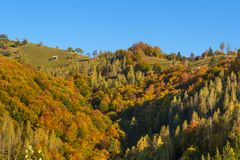 Paysage de campagne dans un villlage roumain Photographie stock