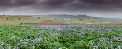 Paysage de campagne en Suisse avec les champs pourpres de wildflower et village de champ de ferme et idyllique coloré dans les te image stock