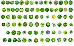 Paysage de carte blanche d'arbres de plan Photo stock