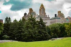 paysage de Central Park avec des pins et des bâtiments sur le fond photographie stock