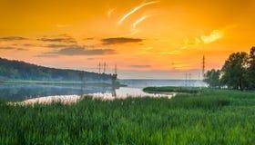Paysage de champ d'herbe verte Photos libres de droits