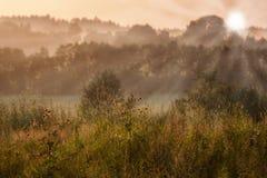 Paysage de champ pendant le coucher du soleil Photos libres de droits
