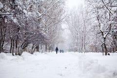 Paysage de chute de neige en parc avec des personnes passant par photographie stock libre de droits