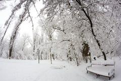 Paysage de chute de neige en parc Effets de lentille de Fisheye photographie stock libre de droits