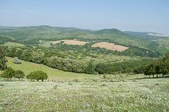 Paysage de colline Photographie stock
